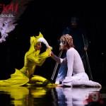 Varekai - Cirque Du Soleil - Guadalajara - Photo Salvador Tabares - Nine Fiction 15