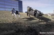 """Conozcan al robot cuadrúpedo """"Spot"""""""