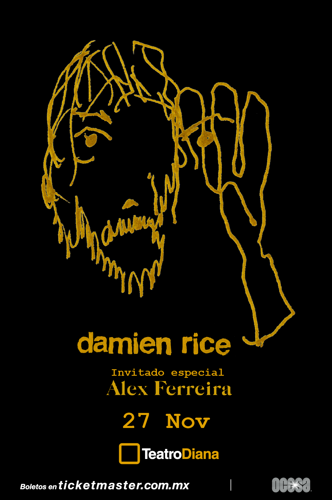 Damien Rice - Guadalajara - Nine Fiction