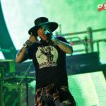 Luis Gómez Sandi_Guns and Roses_Nine Fiction (19)