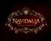 Navidalia Llega en Todo su Esplendor