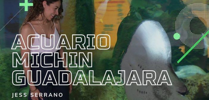 ¡El Acuario Michin de Guadalajara festeja a los niños!